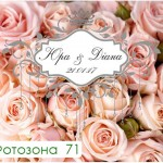 фотозона 71 ікваПрокат www.ikvaProkat