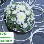 4,043  Хризантема з барвінком