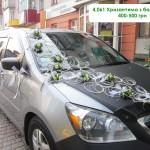 4,061 Хризантема з барвінком, 400-500 грн