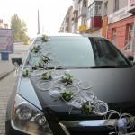4,062  Хризантема з барвінком, 400-500 грн