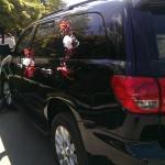 червоні прикраси на авто
