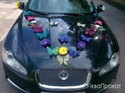 ромашки метелики декорування автомобілів