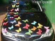 3,44 Різнокольорові  метелики, 10-20 грн за 1 шт. Прокат по 10 грн шт