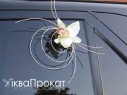 3,61 Елемент декору скла,  орхідея, 25 грн шт