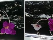 3,48-7  Прикраса Злата на перід , зад та бік авто ( фіолетова+біла+крем). Комплект на лімузин 400-800 грн, на седан 200-400 грн