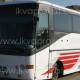 великий автобус ан весілля 45-50 пасажирів